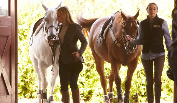 covert-affairs-horse-to-water