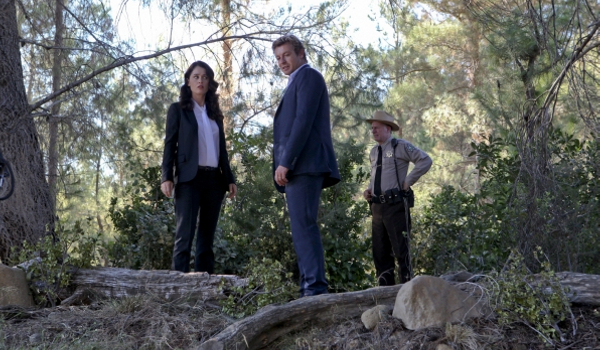 The Mentalist - Wedding in Red