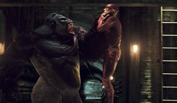The Flash - Grodd Lives