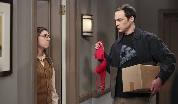 The Big Bang Theory - The Separation Oscillation