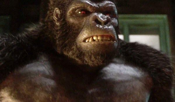 The Flash - Gorilla Warfare
