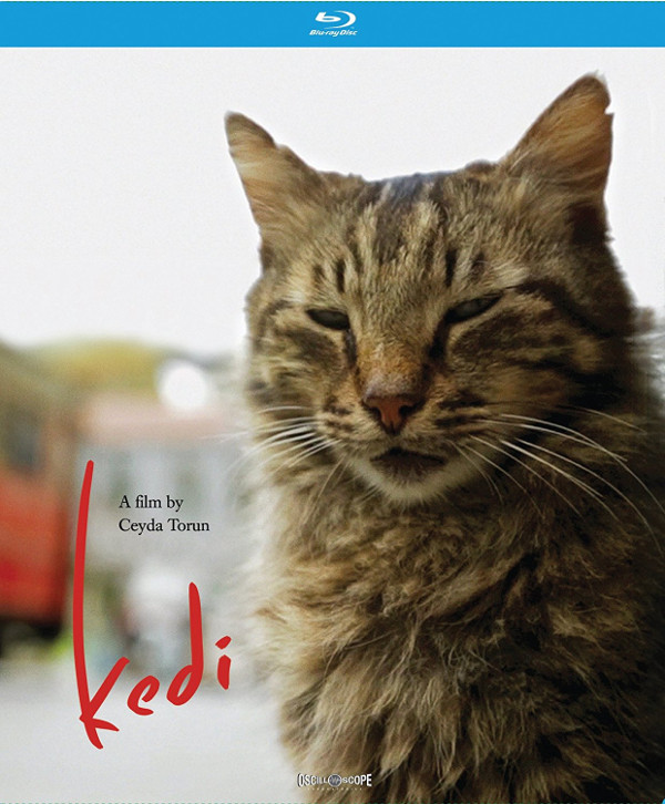 Kedi Blu-ray review