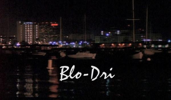 Silk Stalkings - Blo-Dri television review