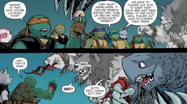 Teenage Mutant Ninja Turtles #114